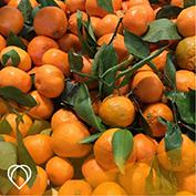 Mikan, Satsuma mandarin orange