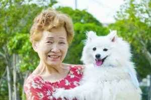 A healthy Japanese old woman with his white dog