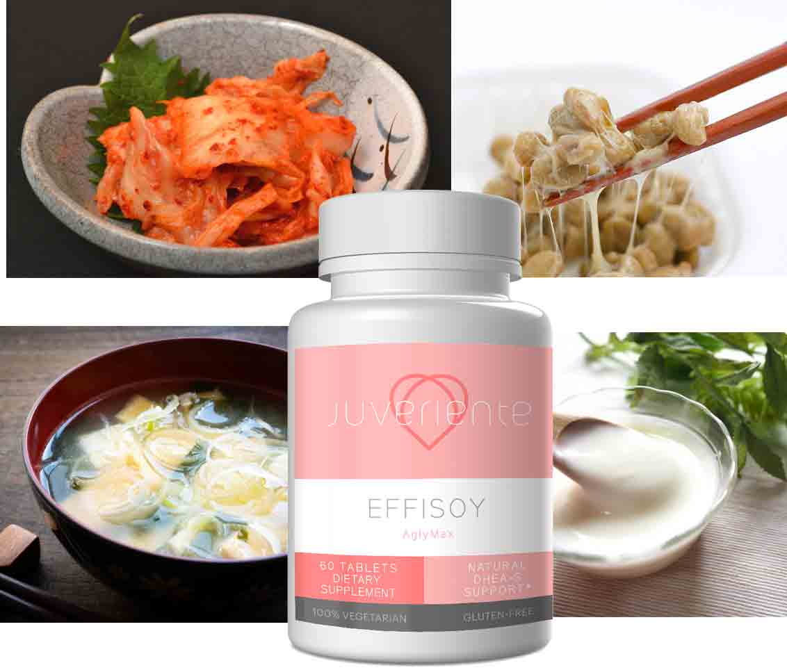 Fermented Supplement Effisoy