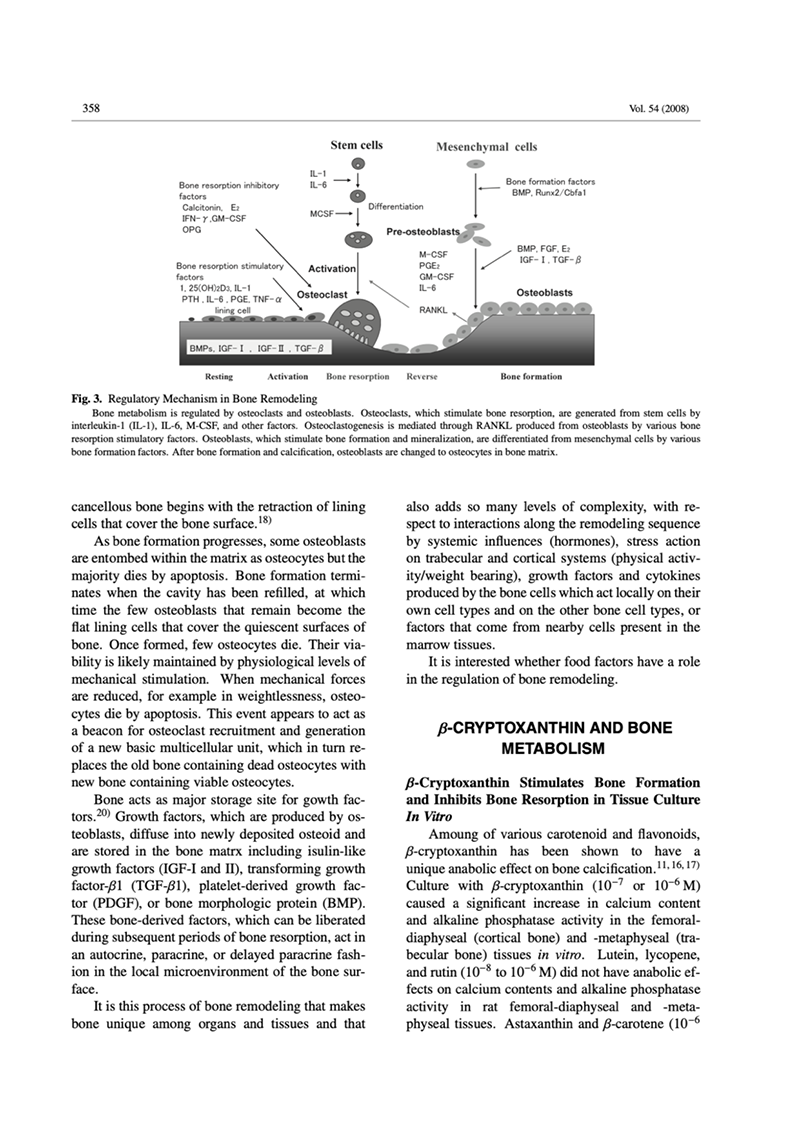 Clinical Study of the Osteoporosis Improvement with β-Cryptoxanthin